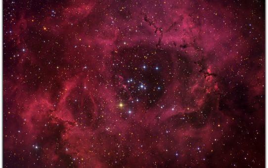 Rosette stars - blue is hot