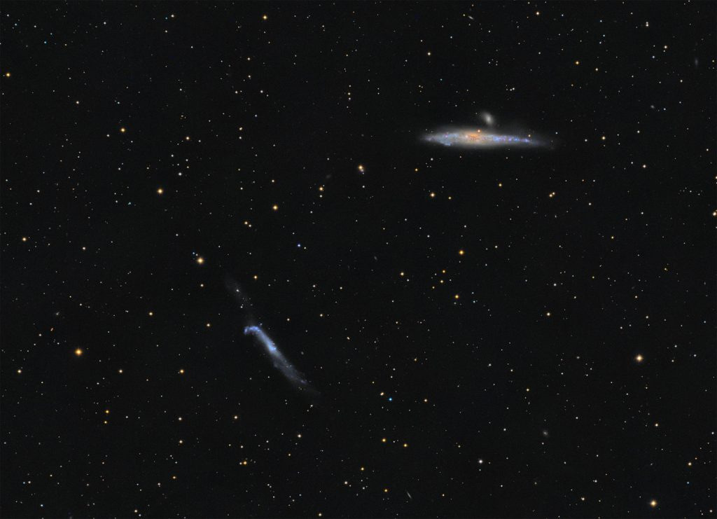 NGC4631 and NGC4656 galaxies
