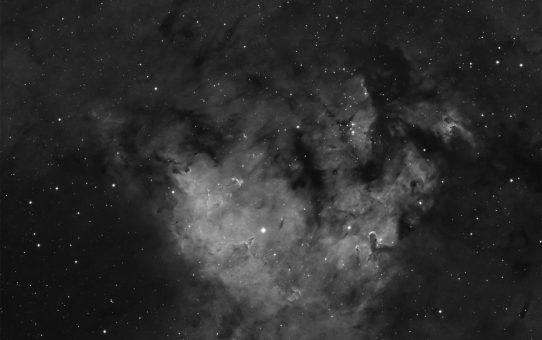 Cepheus star nursery