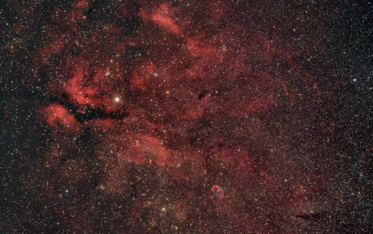 Supergiant star in Cygnus Heart