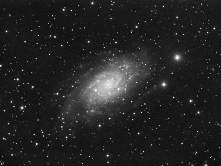 NGC2403 galaxy in Camelopardalis