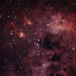 The Tadpoles of IC410