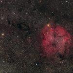 IC1396, Elephant Trunk and Garnet Star