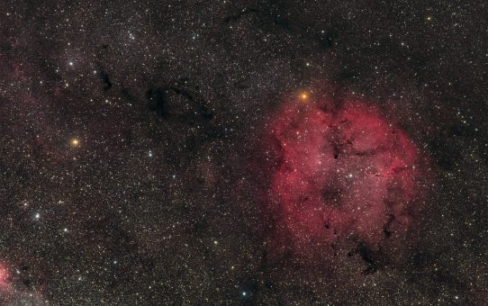 IC1396, Elephant Trunk and Garnet Star