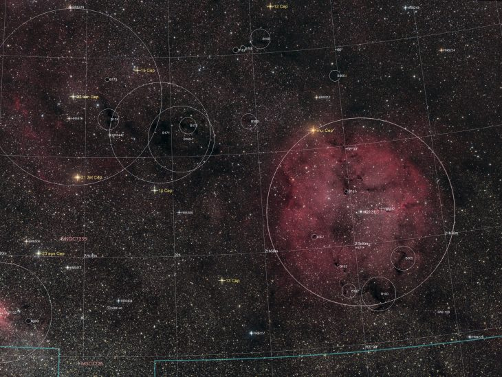 IC1396 area annotated
