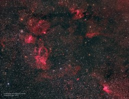 Cassiopeia and Cepheus widefield