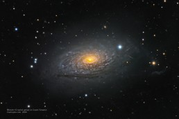 Messier 63 spiral galaxy crop