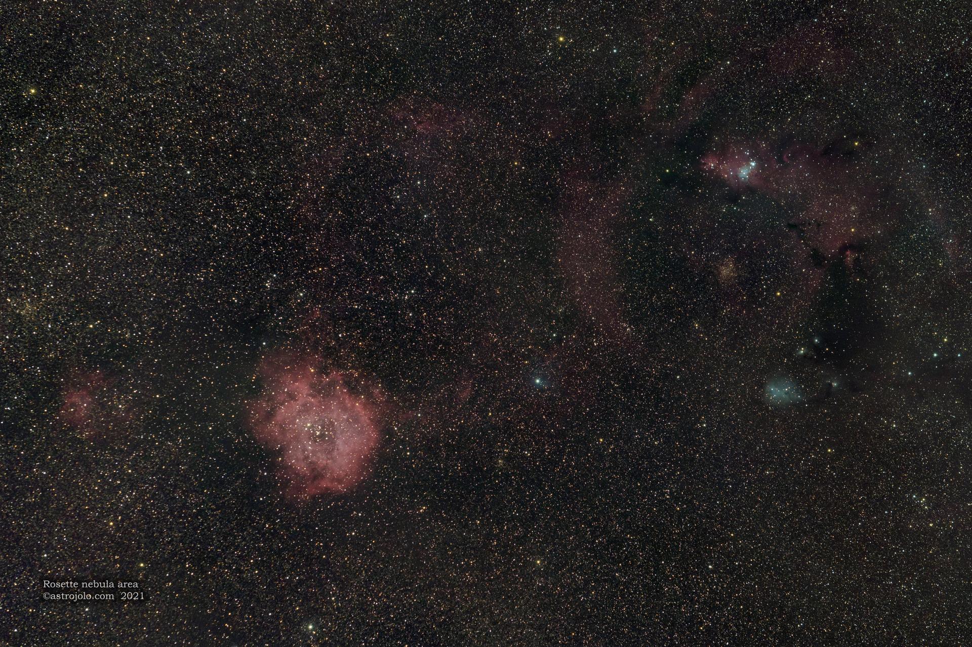 2021-03-05-Rosette.jpg